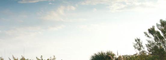 Florida2011_0217